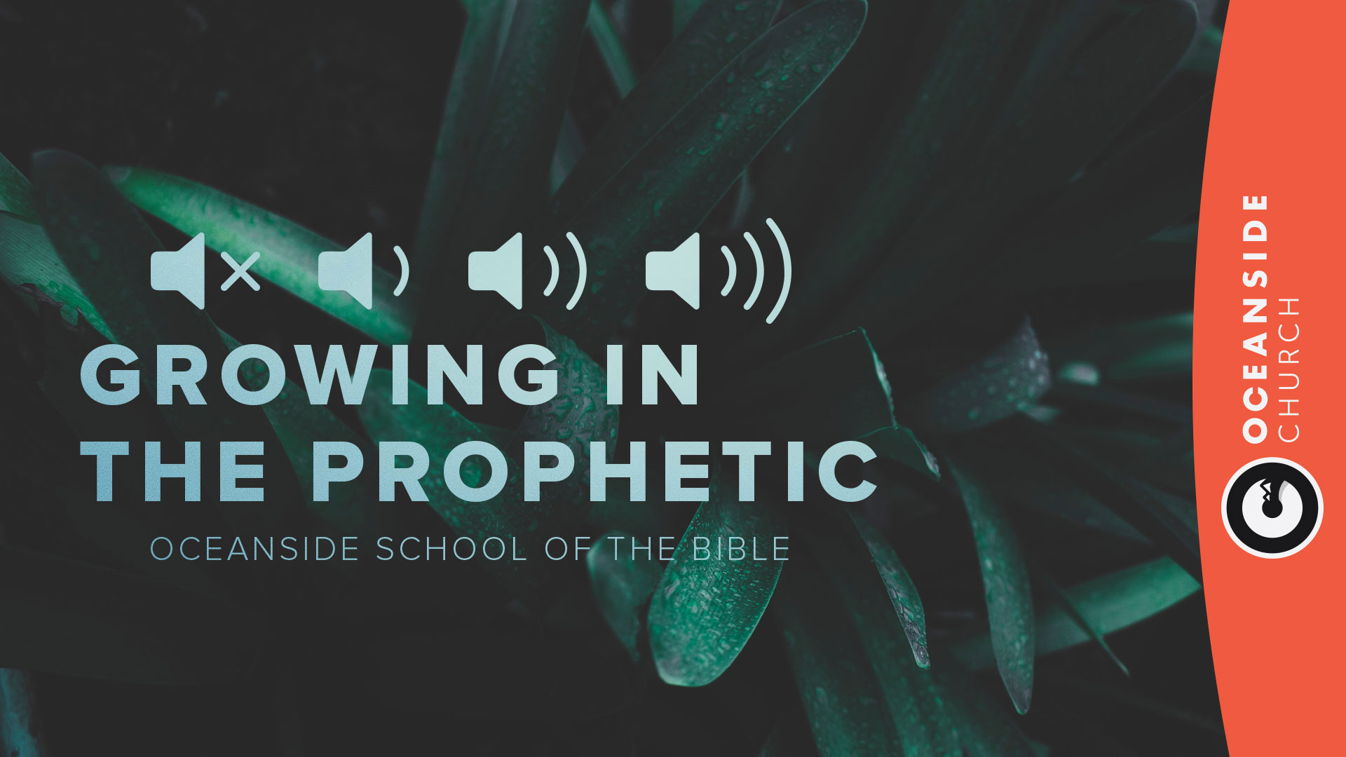 School of The Bible - Fall 2018